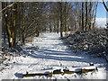 TQ4676 : The Green Chain Walk in snow by Marathon