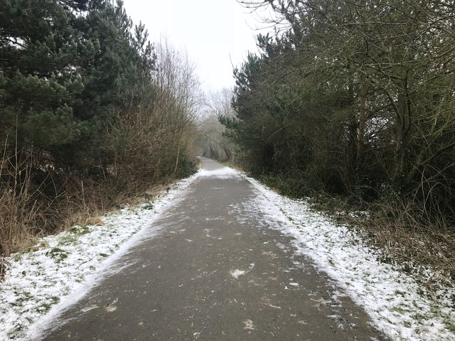 Path and National Cycle Route at Silverdale