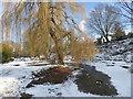 TQ4577 : Winter in Rockcliffe Gardens by Marathon
