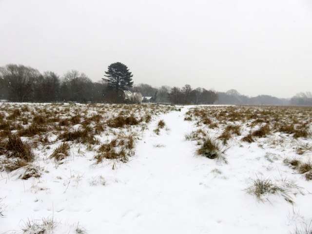 Footpath across the meadow