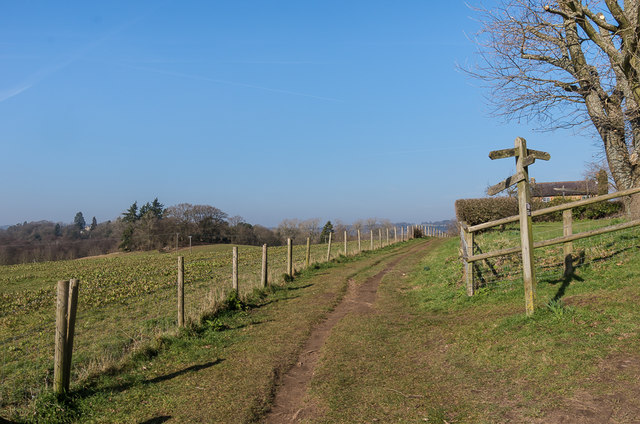 Footpath past Ede's Field