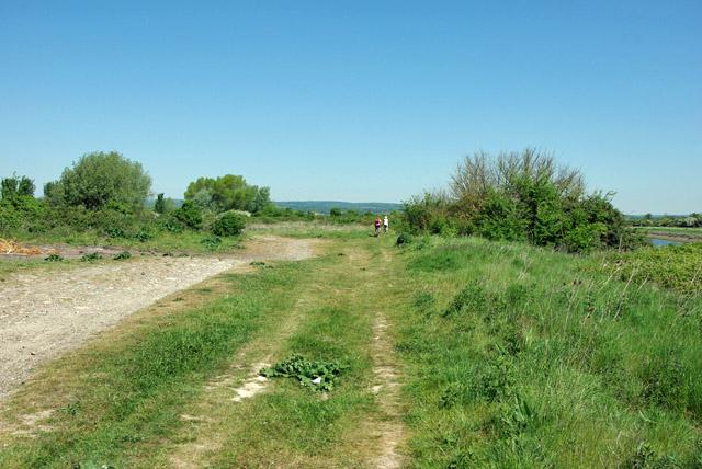 River bank path