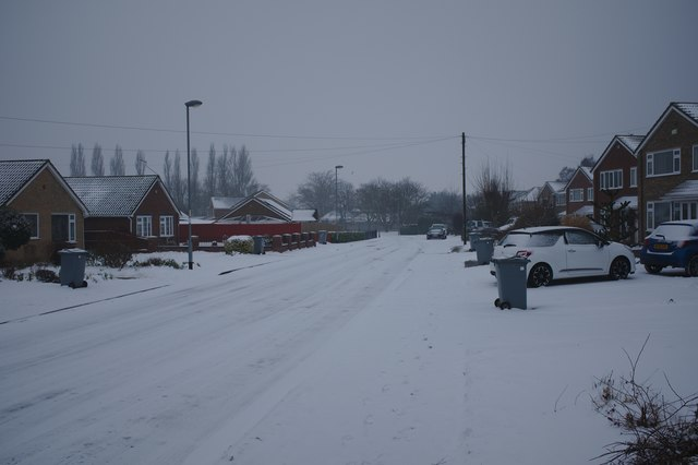 Beech Avenue in the snow