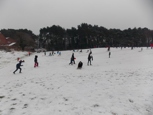 Redhill: sledging on Redhill Park