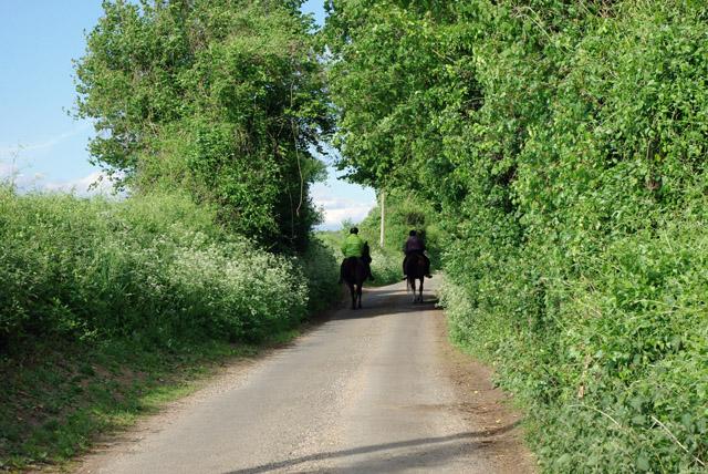 Riding on Blakehurst Lane