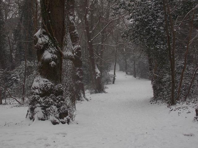 Talbot Village: footpath N11 from Slades Lane