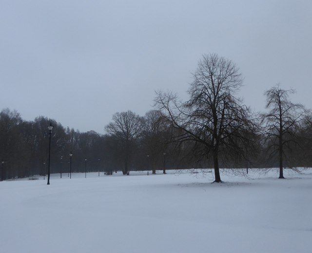 Lampposts and trees in Ashridge College grounds