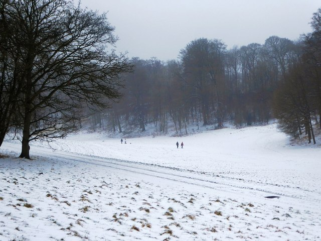 Snow covered Golden Valley, Ashridge Estate