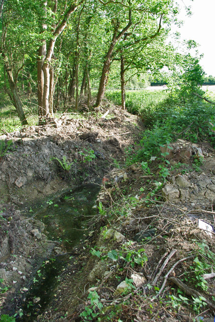 Recently cleaned ditch south of Crossbush Lane