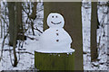 SE9628 : Mini Snowman, Welton Dale by Ian S