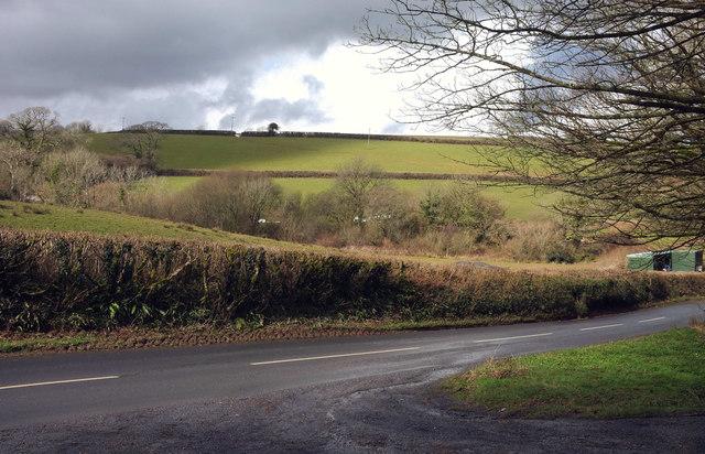 Farmland near Woodland Barton