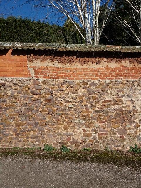 Cullompton: wall in Lower Mill Lane