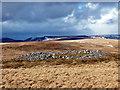 SO0210 : Carn Cefn Cil-Sanws / Cefn Cil-Sanws Cairn : Week 10
