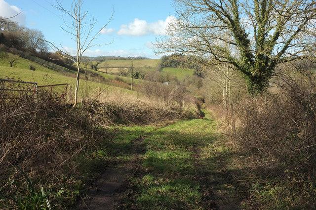 Track near Glebe Cottage