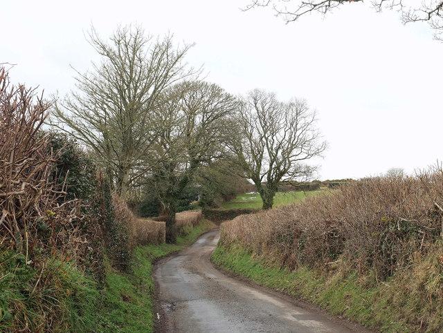Lane to Middlecott