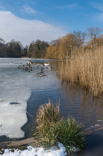 Priory Pond