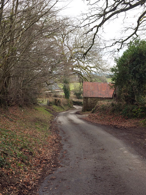Lane at Middlecott