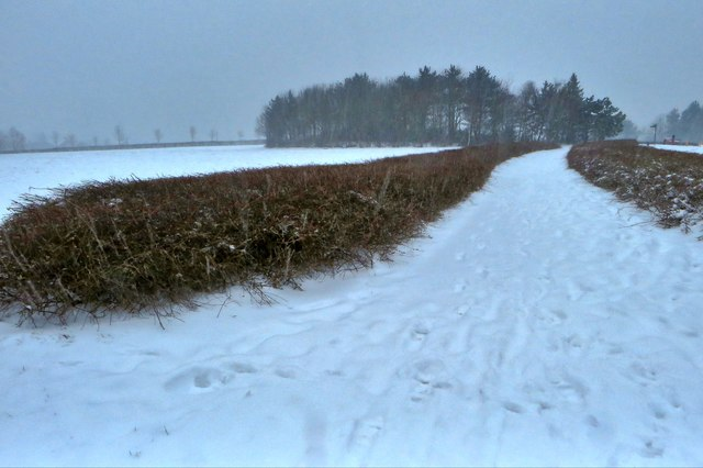 Snowy footpath to Furzton Lake