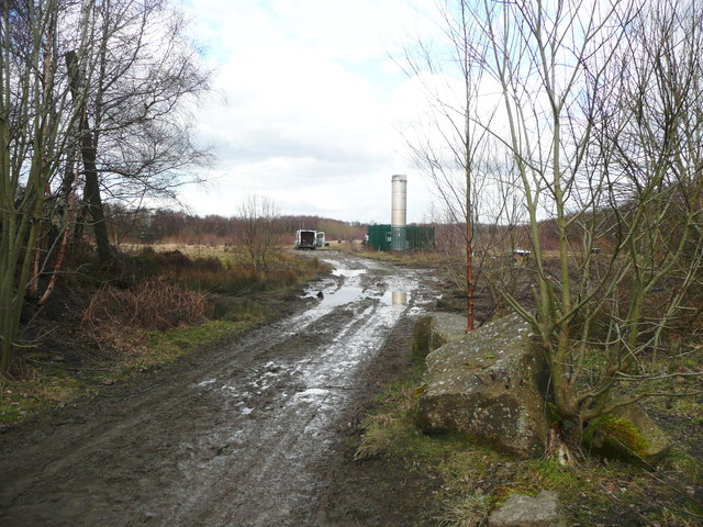 Entrance to filled-in quarry, Honley Wood