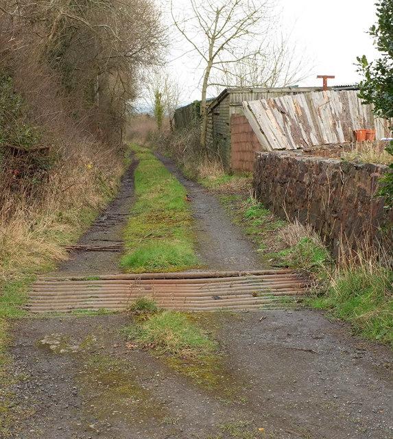 Track to Blue Violet