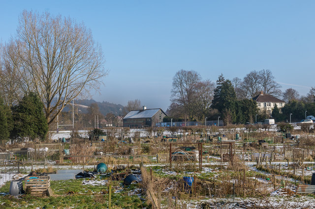 Park Lane Allotments