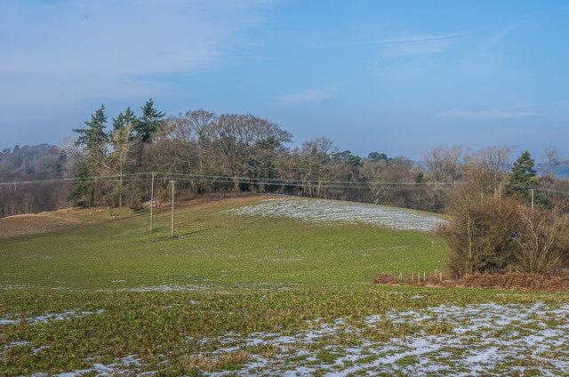 West of Ede's Fields