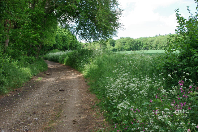 Bridleway north from Swillage Lane