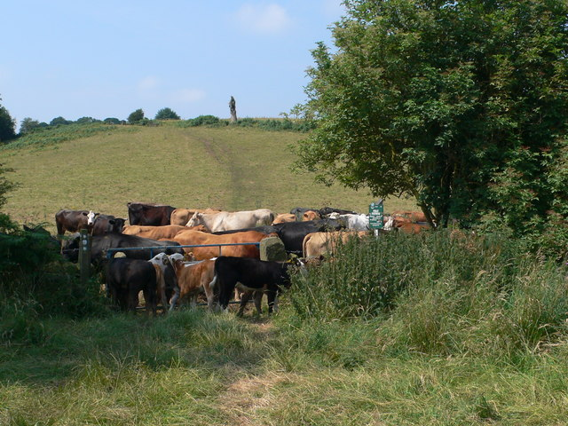 Blockage on the Midshires Way