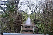 SY0086 : Footbridge, Gillbrook by N Chadwick