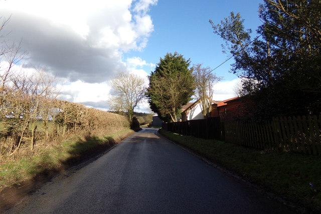 Dane Street, Dane Street