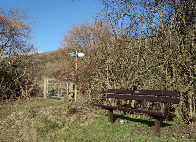 Seat by the Footpath