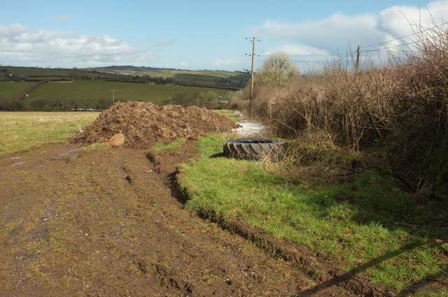 Manure heap and tyre, Langford Gate