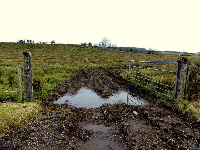 Muddy entrance to field, Aghadulla (Harper)