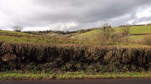 Farmland near Cutwellwalls