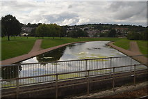 SX9192 : Exe Flood Relief Channel by N Chadwick