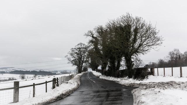 Minor road, trees and snow near Whittingham Lane
