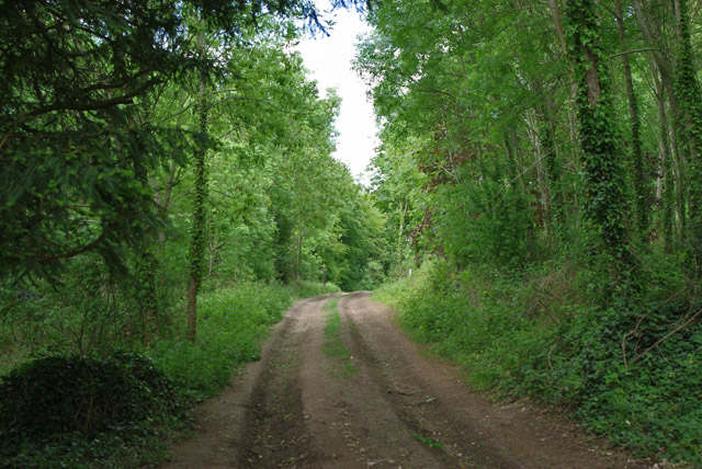 Track towards Angmering Park