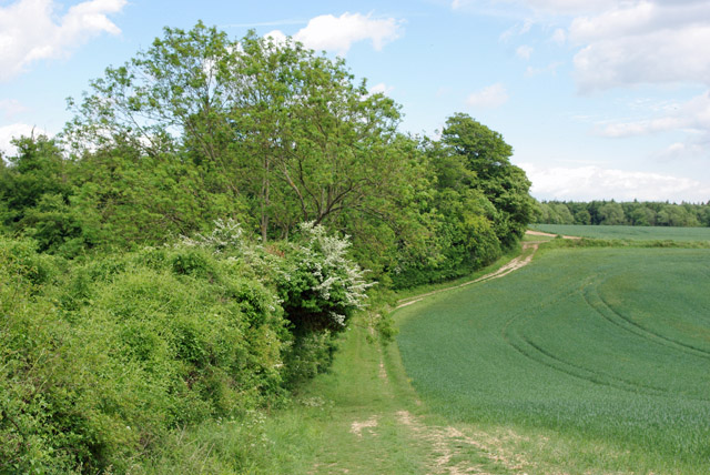 Footpath, Angmering Park estate