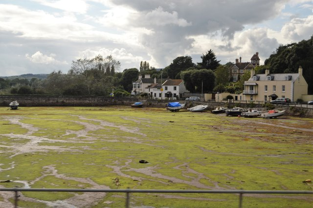 Cockwood Harbour (tide out)