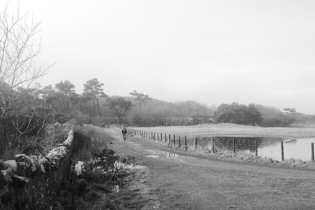 Road, Lochhouses Links by Richard Webb