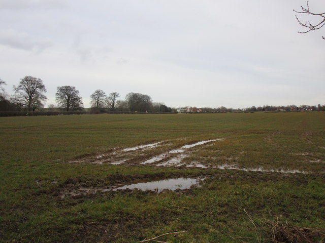 Wet field off Catwick Heads