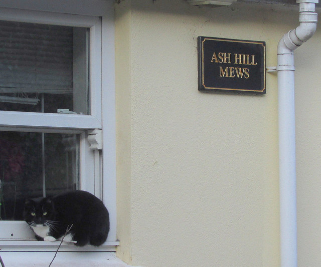 Ash Hill Mews, Torquay
