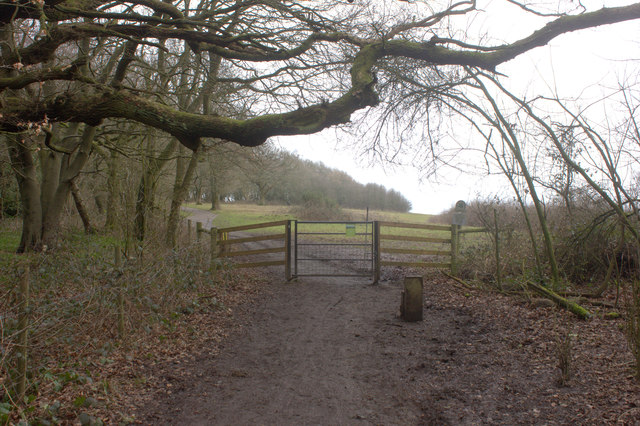 Gate on to National Trust area at Colley Hill