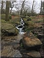 SK2680 : Small waterfall into Burbage Brook : Week 11