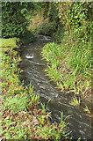 SW9873 : Stream, Trevilling by Derek Harper