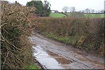 SY0088 : Moor Lane by N Chadwick