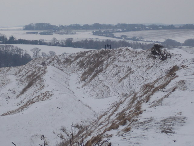Stourpaine: the northern ramparts of Hod Hill