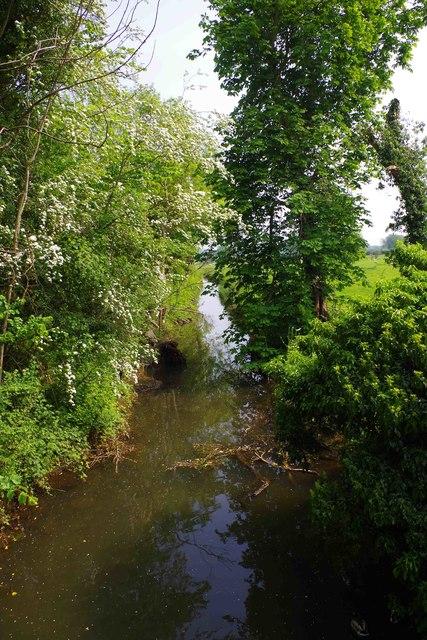Stream at Bablock Hythe, Oxon