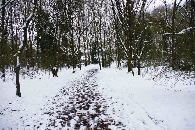 Footpath in Burlish Top Nature Reserve, Stourport-on-Severn
