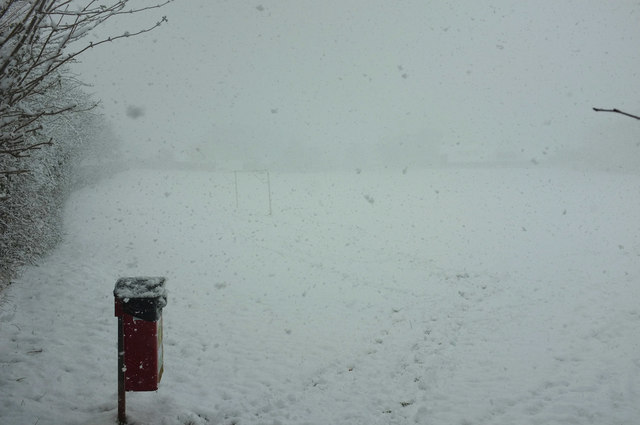 Whiteout, Cricketfield Road, Torre